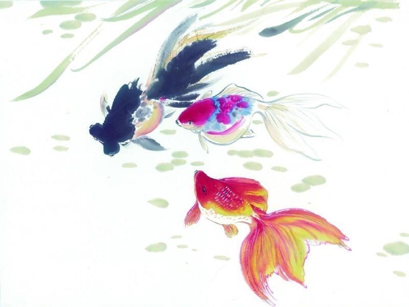 小金鱼的故事|严颉